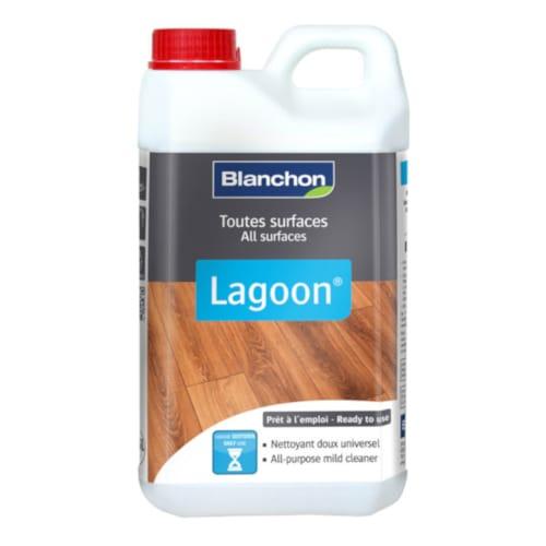 Blanchon Lagoon Cleaner