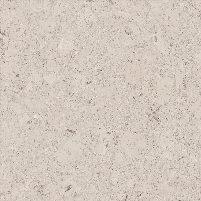 Amorim WISE - Cork Pure - Shell Moonlight